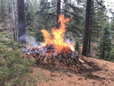 Pile Burning North Lake Tahoe